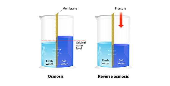 Osmosis vs Reverse Osmosis